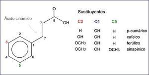 400px-Acido_hidroxicinamico